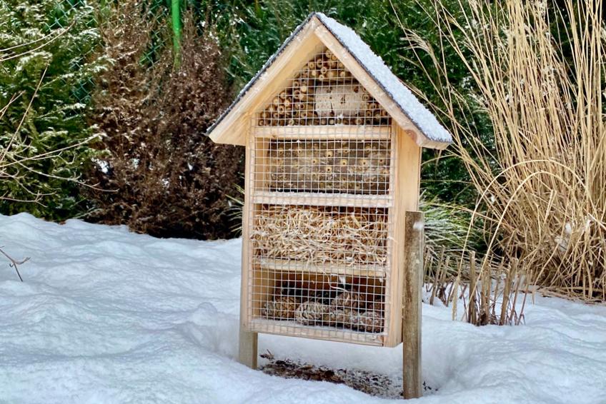 Insektenhaus im Winter